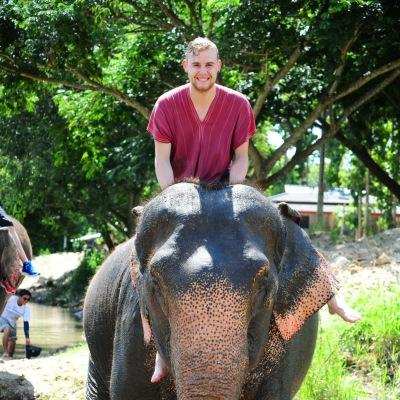 elefanta4